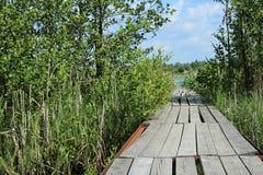 Un petit pont, pilier en bois Photo libre de droits