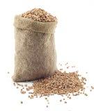 Un petit sac de sarrasin Photo stock