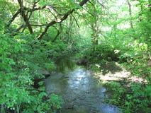 Un petit tributaire de la grande rivière photographie stock libre de droits