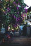 Un petit village Photo libre de droits