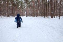 Un peu de childe marche dans la forêt d'hiver Images stock