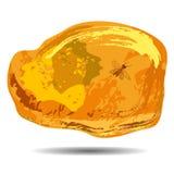 Un pezzo di ambra con un insi preistorico fisso della mosca Fotografia Stock