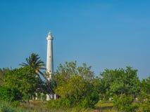 Un phare blanc se levant hors de la végétation tropicale photo libre de droits