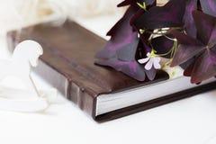 Un photobook hermoso del blanco con marrón miente en un fondo blanco cerca miente una flor hermosa Pequeño caballo blanco Fotografía de archivo