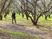 Un photographe de jeune fille prenant des photos en parc de ressort Images libres de droits
