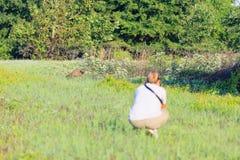 Un photographe prenant des photos d'un raton laveur forageant pour le petit déjeuner pendant les heures tôt du matin à la réserve photos stock