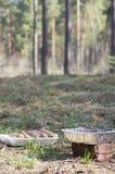 Un piatto dei kebab arrostiti col barbecue deliziosi sugli spiedi per un'estate pi Fotografie Stock Libere da Diritti