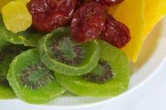 Un piatto dei pomodori, dei manghi, dell'ananas e del kiwi secchi Immagine Stock Libera da Diritti