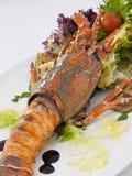 Un piatto del pranzo con l'aragosta e gli ortaggi freschi Immagine Stock