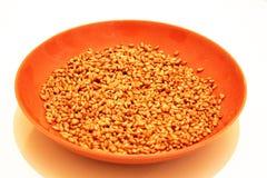 Un piatto della ceramica con i semi di wheet Fotografia Stock