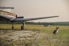 Un piccolo aereo in un campo Fotografie Stock Libere da Diritti