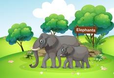Un piccolo e grande elefante royalty illustrazione gratis