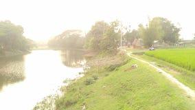 Un piccolo fiume del villaggio fotografie stock