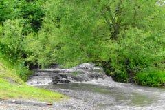 Un piccolo fiume della montagna nei carpathians Fotografie Stock Libere da Diritti
