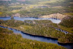 Un piccolo fiume nella foresta su Valdai fotografia stock