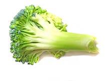 Un piccolo florette del broccolo Fotografia Stock Libera da Diritti