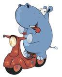 Un piccolo ippopotamo e un motorino di motore rosso fumetto Fotografia Stock Libera da Diritti