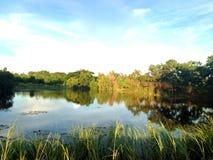 Un piccolo lago Fotografie Stock Libere da Diritti