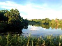 Un piccolo lago Immagini Stock Libere da Diritti