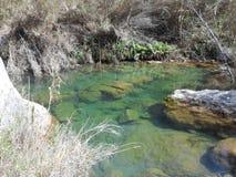 Un piccolo lago Fotografia Stock Libera da Diritti