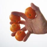 Un piccolo mandarino Immagine Stock