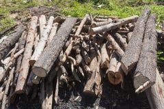 Un piccolo mucchio di collega la campagna, pila della legna da ardere immagine stock