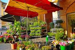 Un piccolo negozio di fiore in una vecchia via nel sud Fotografie Stock