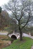 Un piccolo pedone decorativo del ponte attraverso un bacino idrico nella città Forest Park fotografia stock