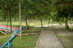 Un piccolo percorso al giardino Immagine Stock Libera da Diritti