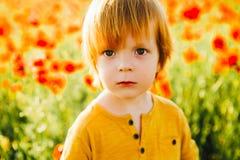 Un piccolo ragazzo dai capelli rossi su un fondo di un campo del papavero fotografia stock