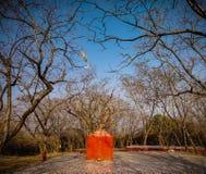 un piccolo tempio dello zafferano nella giungla fotografia stock libera da diritti
