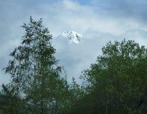 Un pico en las monta?as francesas que muestran a trav?s de la niebla con los ?rboles en el primero plano foto de archivo