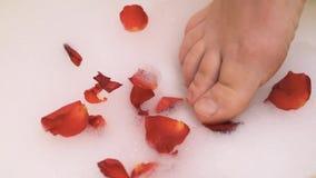 Un piede femminile in schiuma con i petali delle rose rosse stock footage