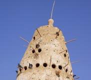 Un pigeonry rurale a Dakhla nell'Egitto immagine stock