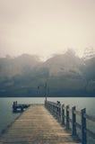 Un pilastro di legno solo a Glenorchy sul lago Wakatipu con gli effetti d'annata di colore immagine stock