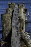 Un pilastro di 50 punti Fotografie Stock Libere da Diritti