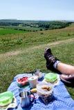 Un pique-nique de petit déjeuner de yaourt aux fruits et de café de mueslie sur un champ Photographie stock libre de droits
