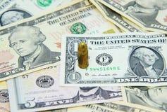 Un pistón en billetes de banco americanos del dólar Imagenes de archivo