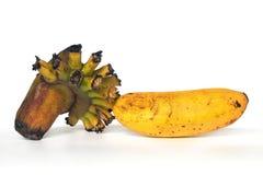 Un plátano amarillo imagenes de archivo
