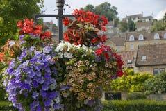 Un plan rapproché des fleurs dans un village anglais pendant l'été Image libre de droits