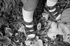 Un plan rapproché des pieds minuscules de bébé Photos libres de droits