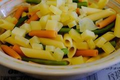 Un plat coloré des pâtes et du fromage italiens photographie stock libre de droits