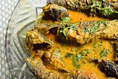 Un plat complètement de la délicatesse de poissons de Tyangra, bengali et indienne Photo libre de droits