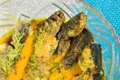 Un plat complètement de la délicatesse de poissons de Tyangra, bengali et indienne Images stock