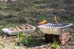 Un plat des chiches-kebabs grillés tout entier délicieux sur des brochettes pendant un été pi Photographie stock