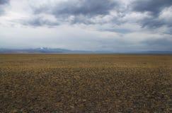 Un plateau large de steppe de vallée avec l'herbe jaune et pierres sous un ciel nuageux Photo stock