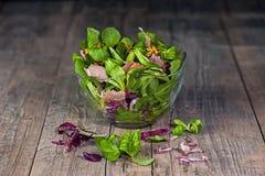 Un plato de diversos tipos de hojas de la lechuga, de arugula, de jamón de prosciutto, de aceite de oliva y de mostaza coloridos  Foto de archivo