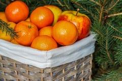 Un plein panier des fruits mûrs Mandarines, oranges, pommes, citrons photos libres de droits