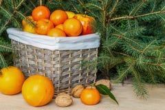 Un plein panier des fruits mûrs Mandarines, oranges, pommes, citrons image stock