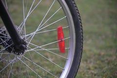 Un pneumatico con gli sporks metallici - fotografia di riserva della parte anteriore del ` s della bicicletta Fotografia Stock